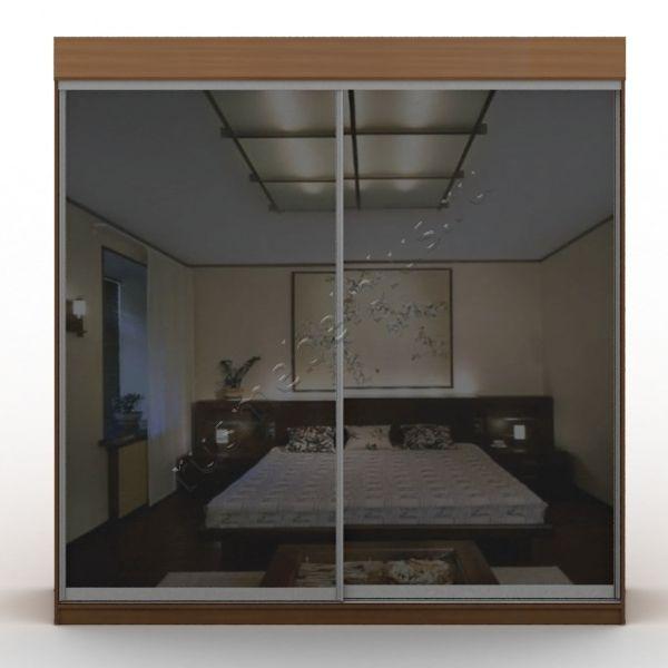 Двери шкафов-купе зеркальные